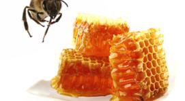 minősített méhpempő